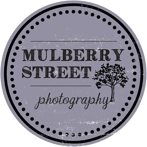 Mulberry Street Photography's Logo