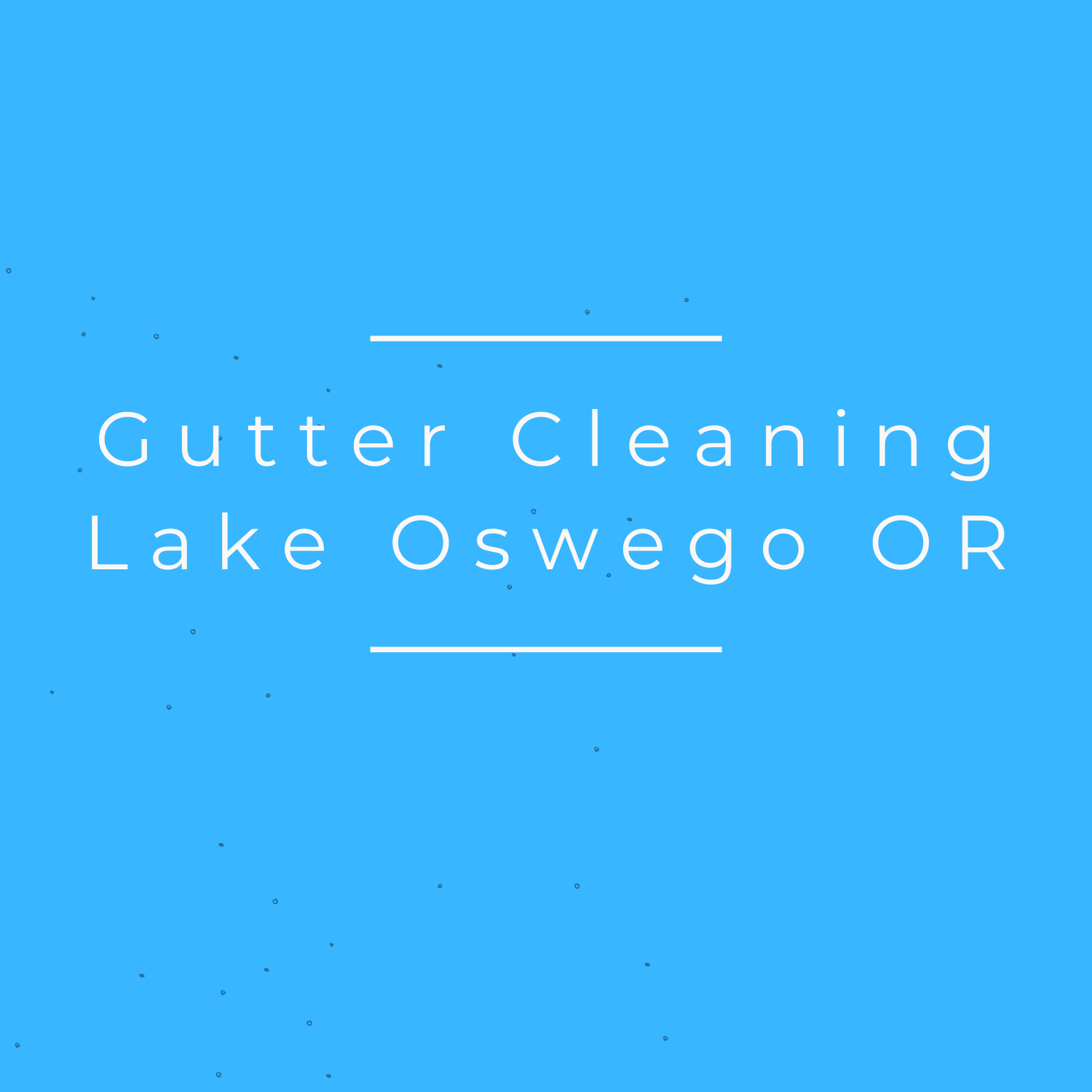 Gutter Cleaning Lake Oswego OR's Logo