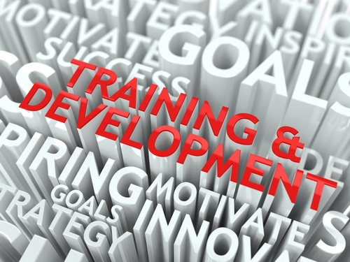 purchasing software training and development