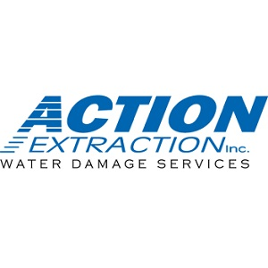 Action Extraction Inc's Logo