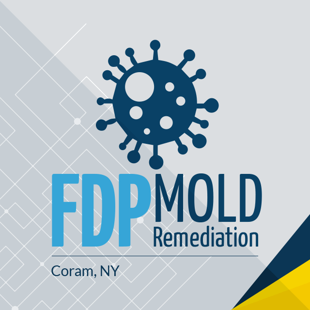 FDP Mold Remediation's Logo